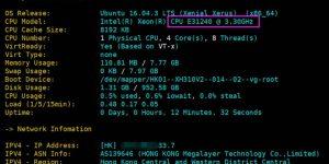 Megalayer香港服务器评测